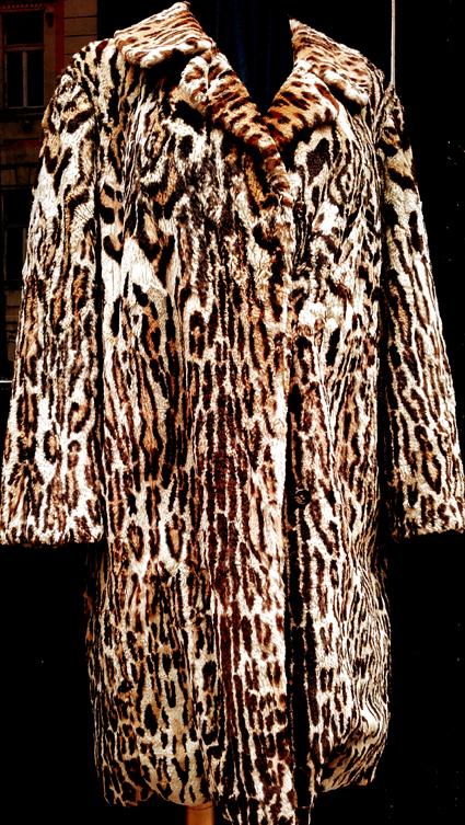 bohemianrertoleopard